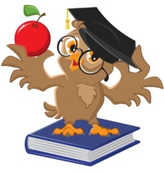 Owl holding an apple vector image