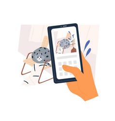 owner s hand with smartphone taking picture vector image