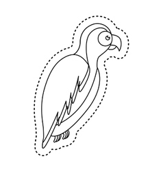 Parrot tropical bird icon vector
