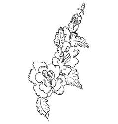 Roses line art design vector