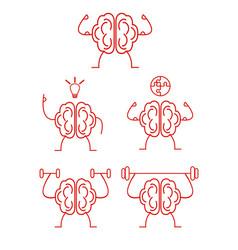 Brain power training vector