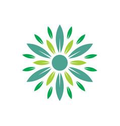 circle leaf nature eco logo vector image vector image