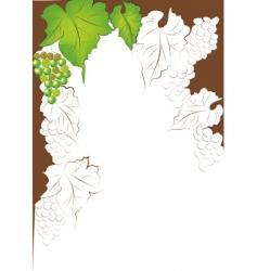 grapevine border vector image