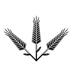 abundant wheat icon simple style vector image