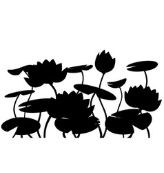 black silhouette water lily lotus pink flower vector image