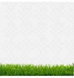 grass border transparent background vector image