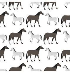 horse pony stallion seamless pattern color farm vector image