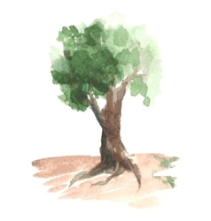 Romantic watercolor tree with green foliage on vector