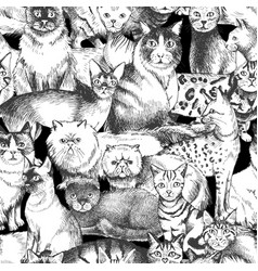 seamless pattern with 16 hand drawn purebred cats vector image