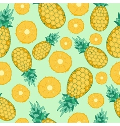 Fruits pineapple seamless patterns vector image