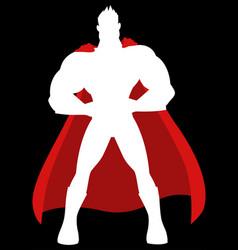 cartoon a superhero vector image