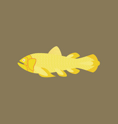 In flat style fish coelacanth vector