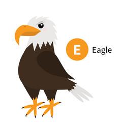 Letter e eagle zoo animal alphabet english abc vector