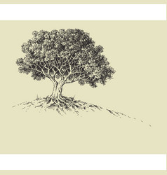 Nature wallpaper a tree in bloom hand drawing vector