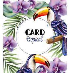 toucan tropic card watercolor exotic vector image