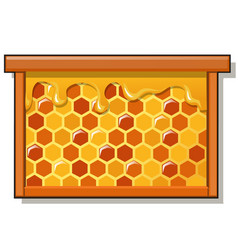 Wooden frame with sweet golden honeycomb with vector