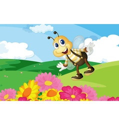 Bee in the field vector image