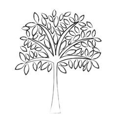 sketch draw tree cartoon vector image