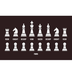 Complete set of chess pieces vector image