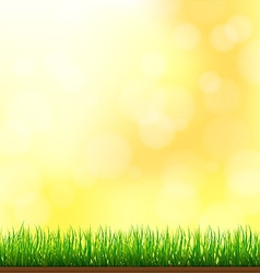 Natural Green Grass Background with Focus and vector image
