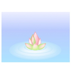 A Pink Lotus Flower on Blue Water vector