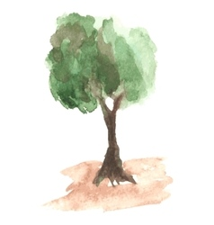 Airy watercolor tree with green foliage which vector image