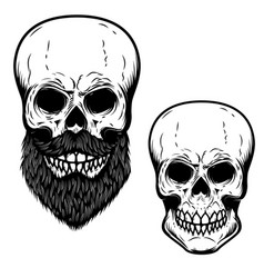 bearded skull isolated on white background design vector image