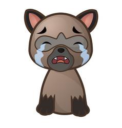 Cartoon siamese cat sad and cry vector