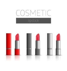 cosmetic lipstick vector image
