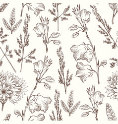 Delicate seamless pattern with wildflowers hand vector