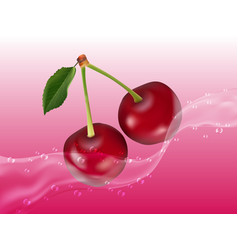 delicious juicy cherry in spray of juice vector image