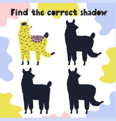 Find correct shadow activity for kids vector