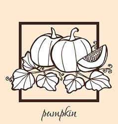 hand drawn pumpkins vector image