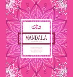 mandala square red background decor vector image