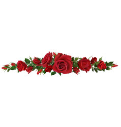 realistic red roses border flower blossom vector image