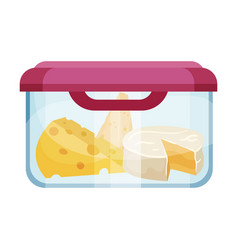 Slabs cheese stored in container vector