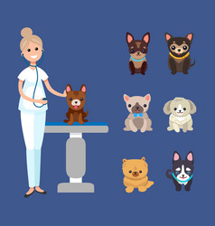 Veterinarian service pets clinic with dogs breeds vector