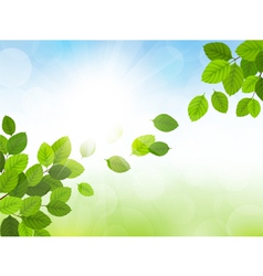 Spring with leaves vector image vector image