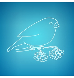 Bullfinch on a Blue Background vector image