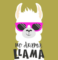 Cute llama isolated vector