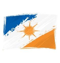 Grunge Tocantins flag vector image