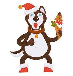 husky dog in collar and christmas hat holds ice vector image