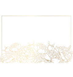Peony rose flowers border frame bottom horizontal vector