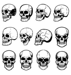 set of human skull on white background design vector image