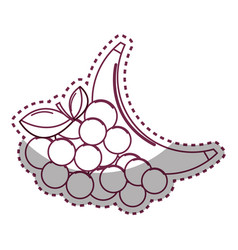 Sticker silhouette grape and babana fruit icon vector