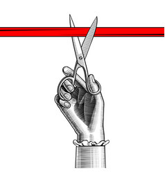 Womans hand with scissors cutting red ribbon vector