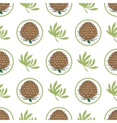 Seamless pattern with pine cones Fir cedar vector image vector image