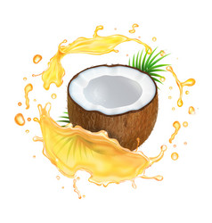 coconut in oil splash vector image