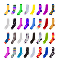 colorful socks vector image