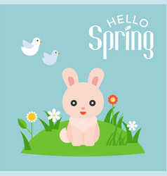 Hello spring typography with cute rabbit character vector